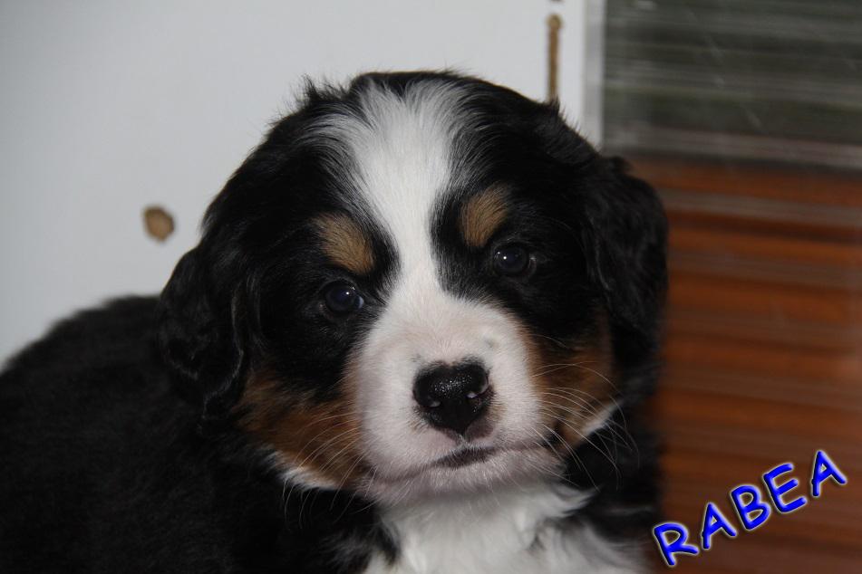 Rabea 5,5 Wochen