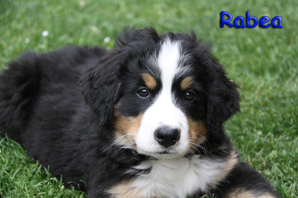 Rabea 9 Wochen