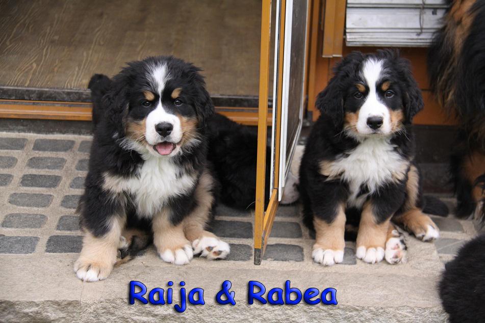 Raija und Rabea 9 Wochen