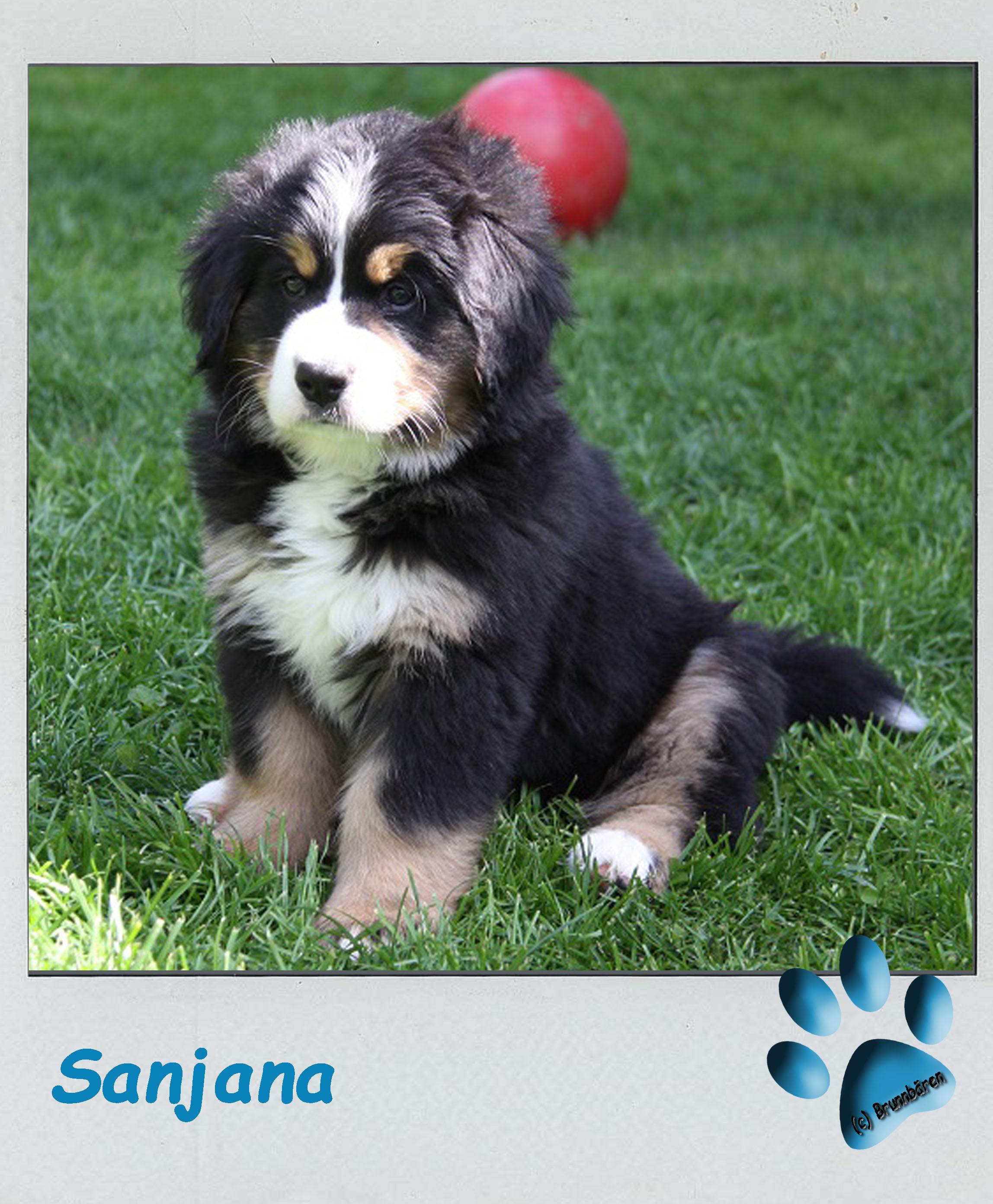 8 Wochen - Sanjana 2